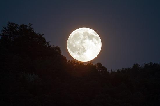 夜中に散歩する奴wwwwwww