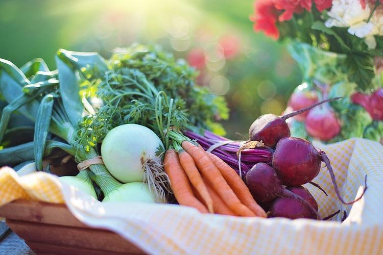 食物繊維とビタミン剤飲めば野菜食べなくてもよくね?