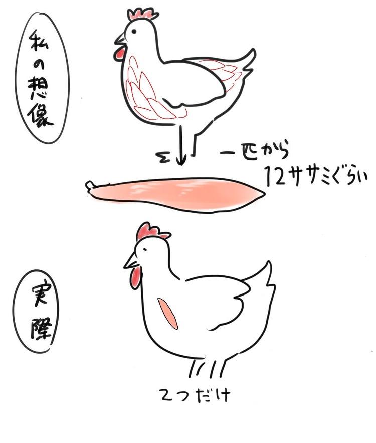 【悲報】1羽の鶏から取れるササミの本数wwwwwwwwwww