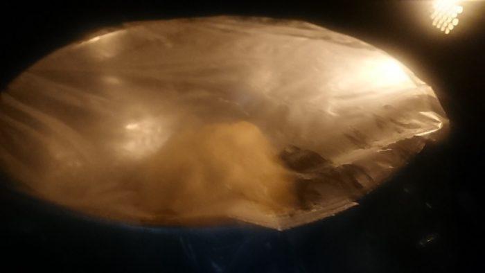 【画像有】今から朝食にバターロール作るよ