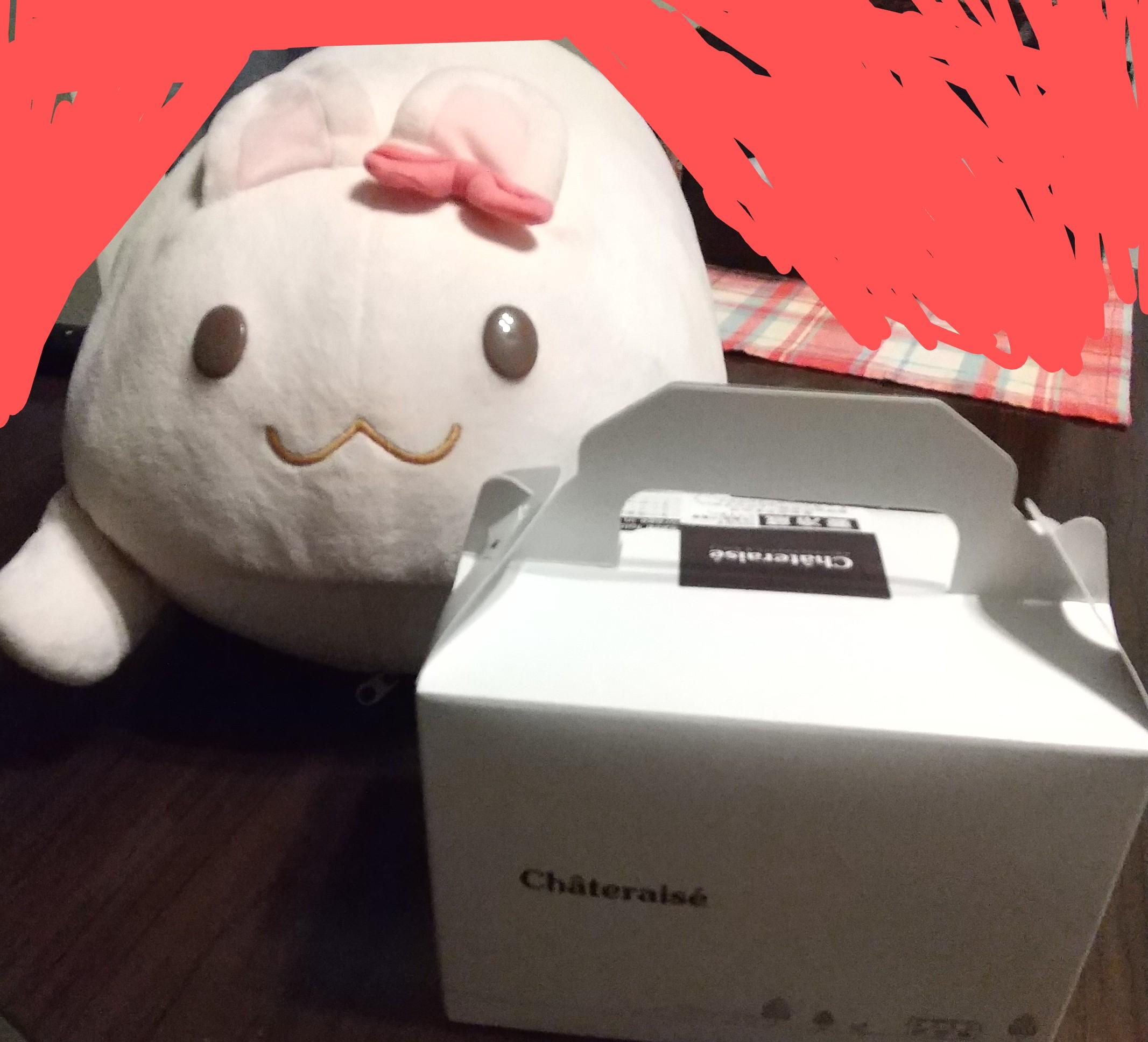 【画像】うさぎさんの誕生日ケーキ買ってきた_?( ´ ×`_∪ ?)ο