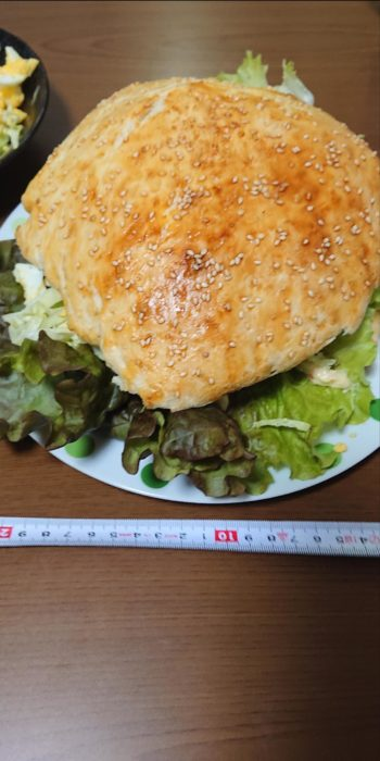 【画像】直径20cmのハンバーガー作ったで!