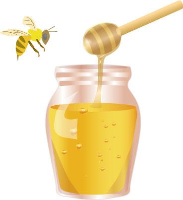 ハチミツとかいう虫が作り出した液体wwwxxwxxww