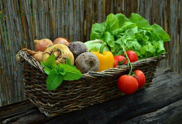 【悲報】堀江貴文さん、生配信のコメントで「野菜取ってて偉い」と褒められブチギレてしまう
