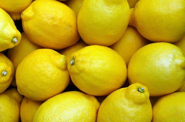 ヨーロッパ人「レモン?なんだいそれは?」