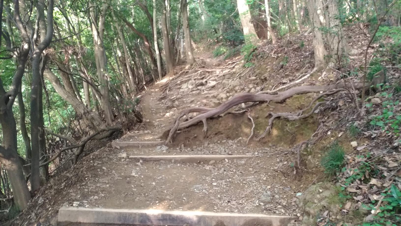 【画像有】今から高尾山登りまーす!