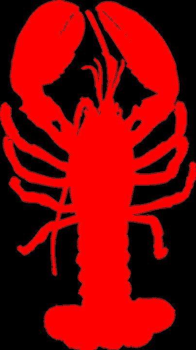 lobster-304118_960_720
