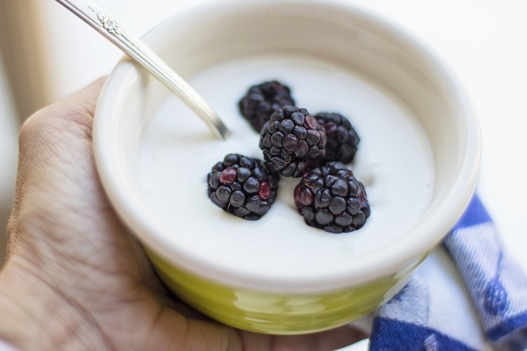 yogurt-3018152_960_720